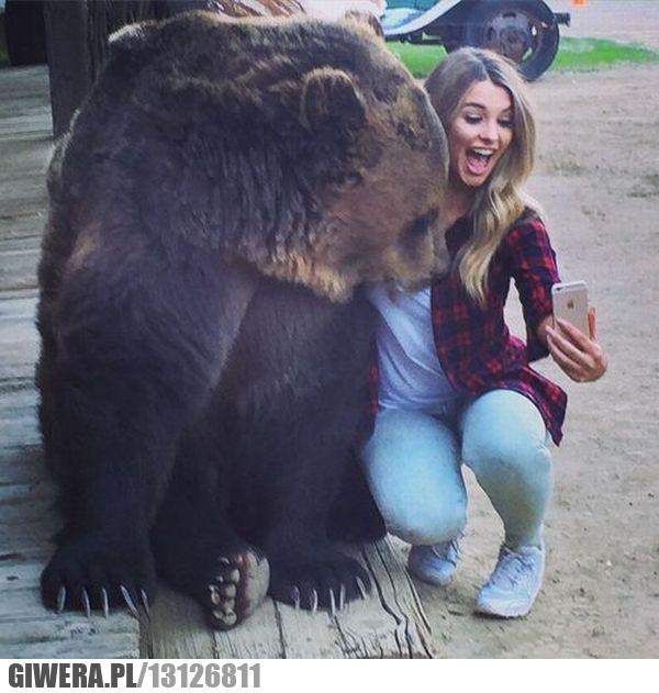 Rosja,Selfie,Samojebka,Niedźwiedź,miś