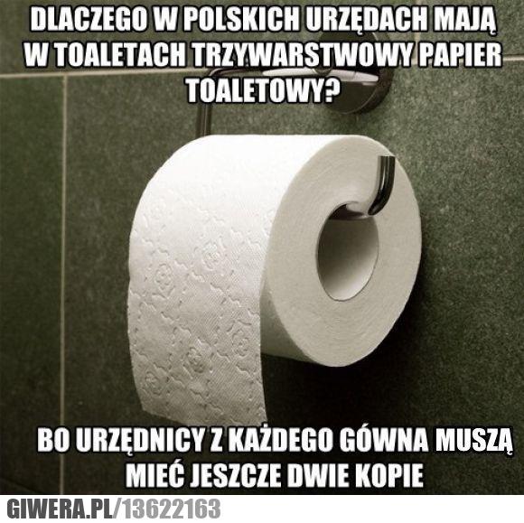 Polscy Urzędnicy,papier toaletowy,kopia
