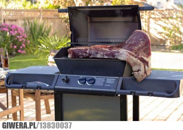 grill,mięso,mięcho