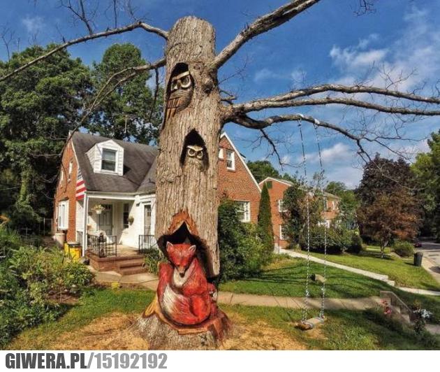 Rzeźbienie w drzewie,lis