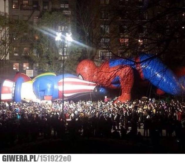 WTF,spiderman
