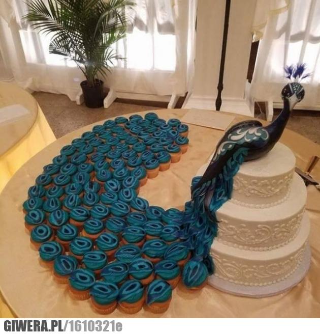 Pawi tort