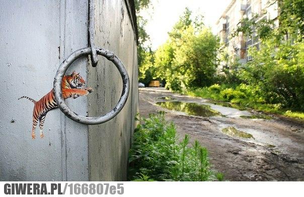 Street Art,Tygrys,Graffiti