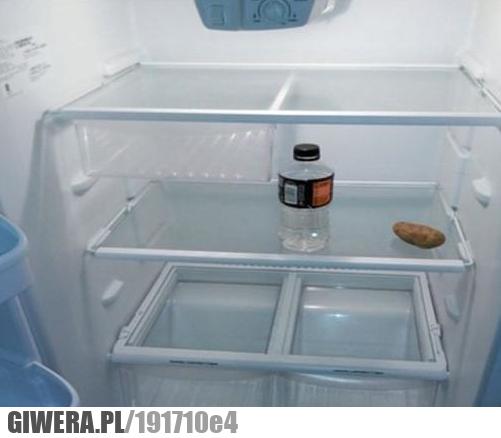 Tymczasem w studenckiej lodówce