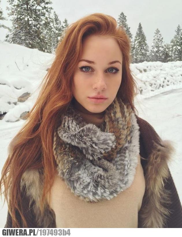 Piękna zima w tle
