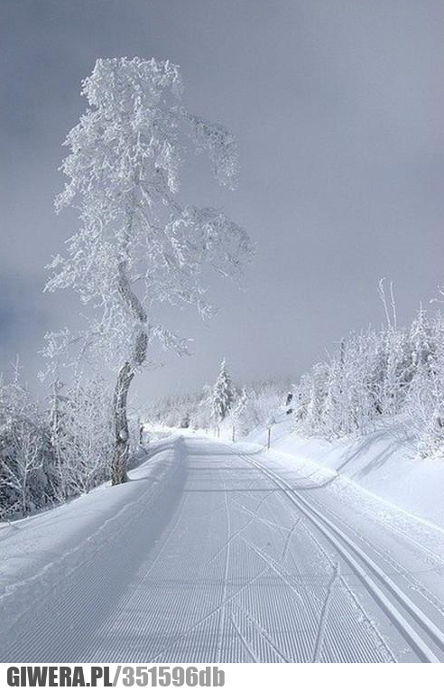 Zima idealna