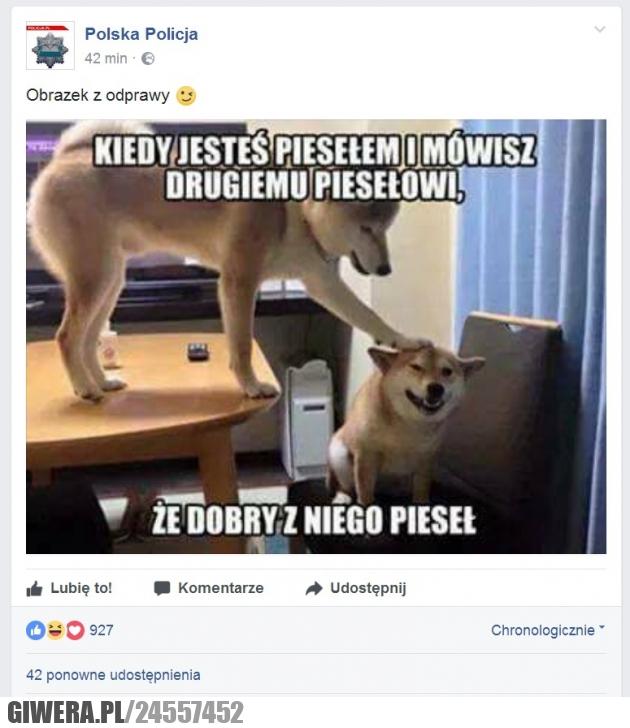 Polska Policja,pieseł