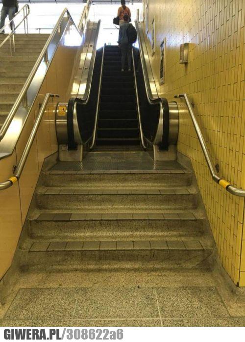 Architekt,schody,ruchome schody