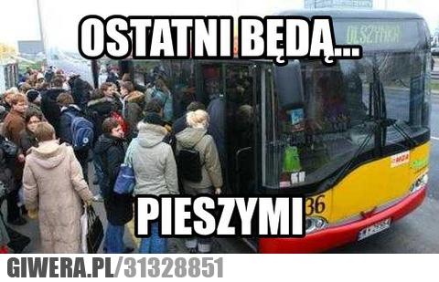 piesi,autobus,heheszki